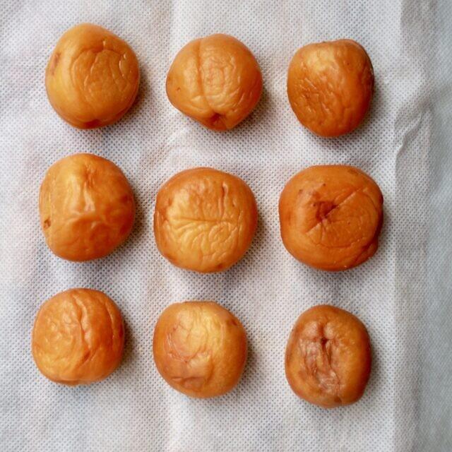umeboshi meruňky